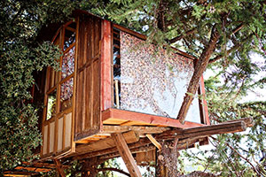 casa-sull'albero-spagna-airbnb