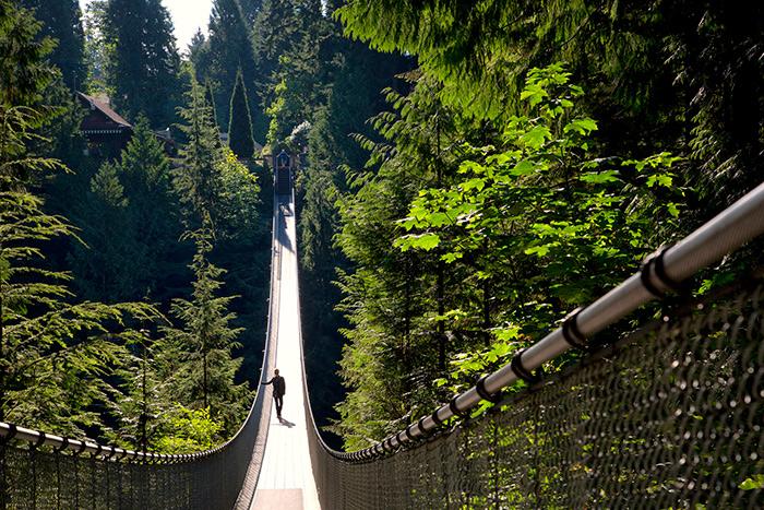 ponte sospeso in canada