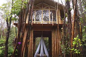 case-sull'albero-affitto-vacanze